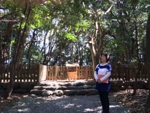 宗像大社神殿