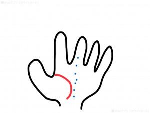 手の生命線