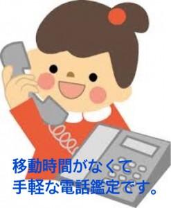 移動時間がなくて手軽な電話鑑定です。